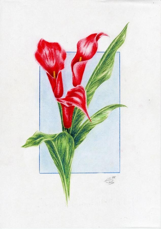 zeichnung nackte frau Langenhagen