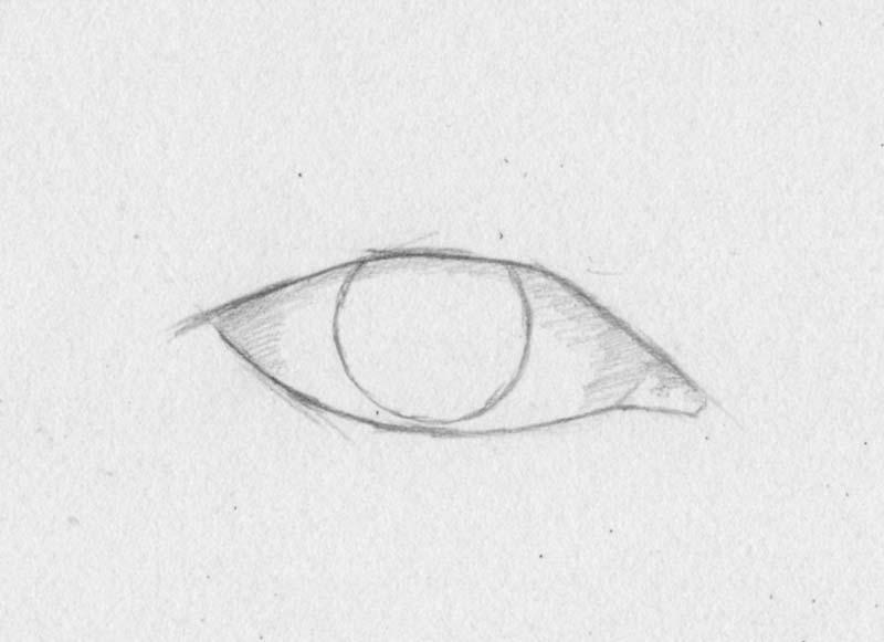Strahlende Augen Pupille Iris Zeichnen Lernen Zeichenkurs