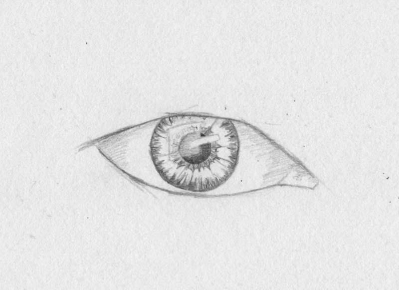 zeichnen lernen augen pupille iris tutorial - Auenfarbe Ideen Fr Kleine Huser
