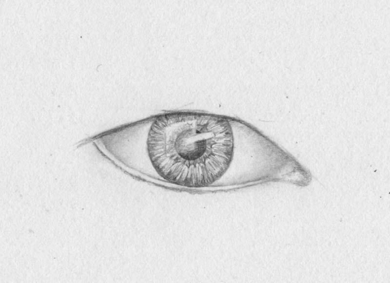 Weiße Pupille