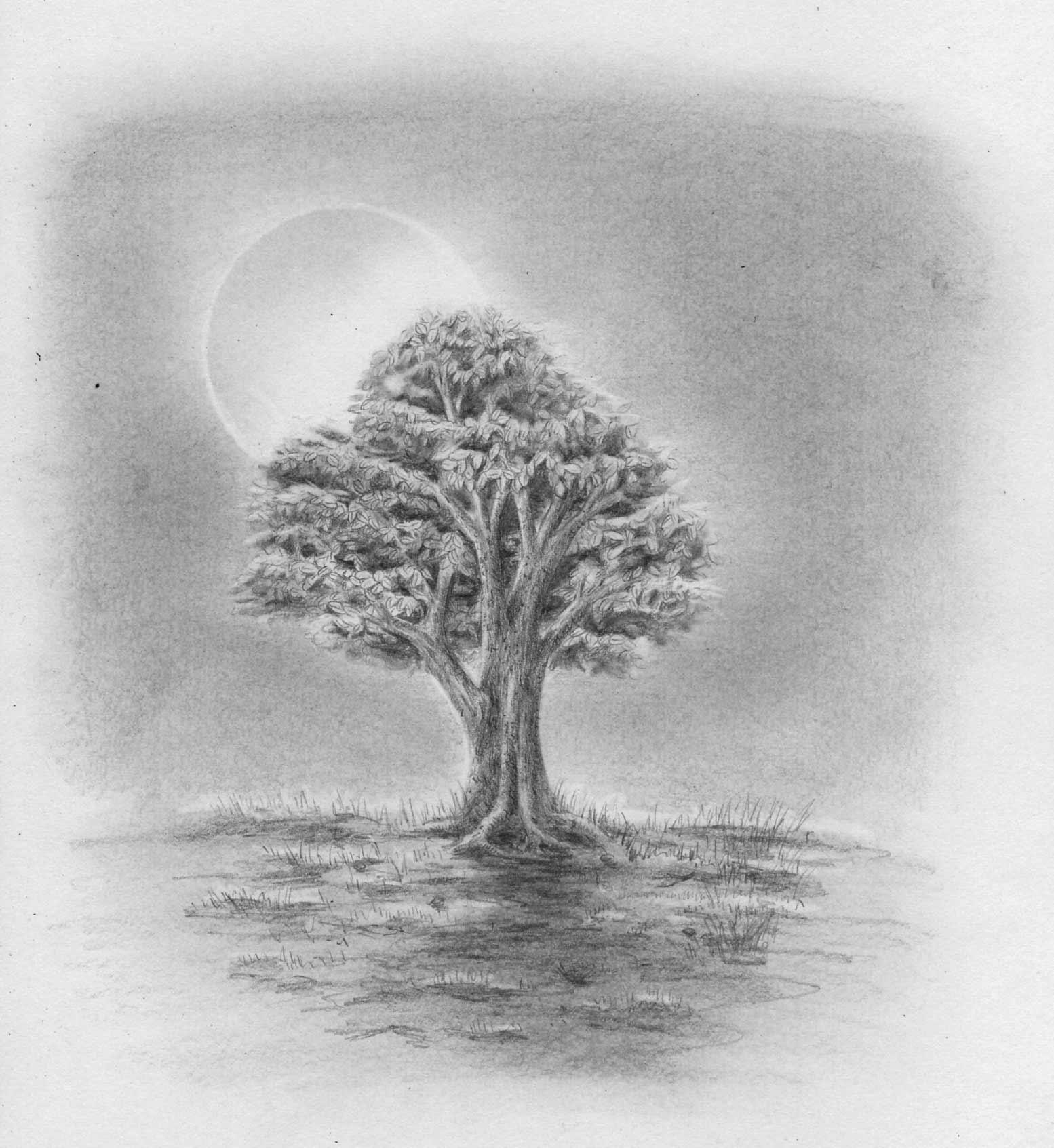 Fingerabdruck Baum Vorlage Andere Motive 12