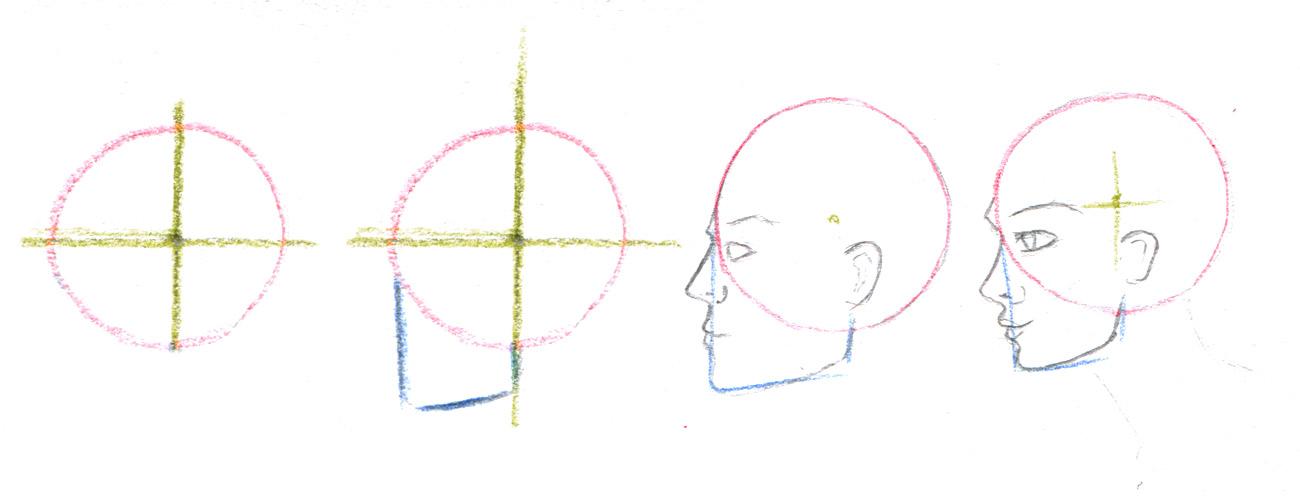 Gesicht im Profil - Seitliches Gesicht