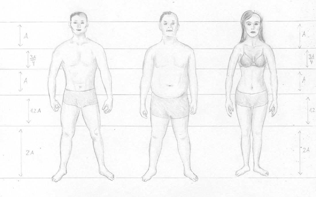 Menschen zeichnen - Proportionen Mann und Frau - Zeichenkurs
