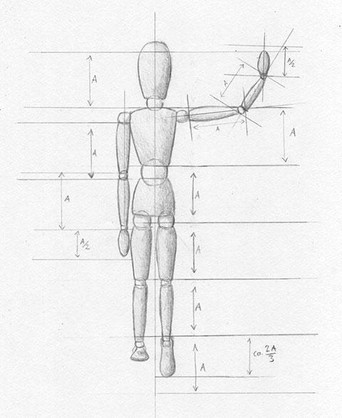 menschen zeichnen proportionen mann und frau zeichenkurs. Black Bedroom Furniture Sets. Home Design Ideas