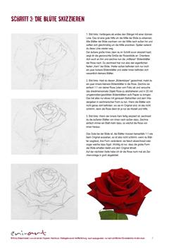 zeichenkurs rose vor der Wand